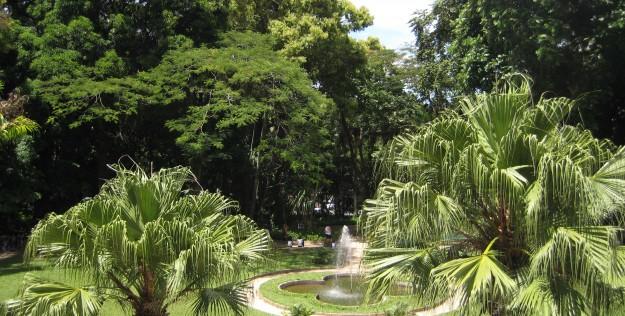 Bairro do Jardim Botânico – Rio de Janeiro