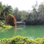 Minas Gerais: Inhotim – Lindo Museu a céu aberto!